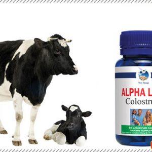 Alpha lipid colostrum capsules
